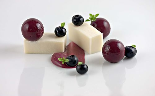 SlicedCoconutBlueberryBushBasil