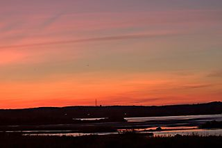 PondReflections
