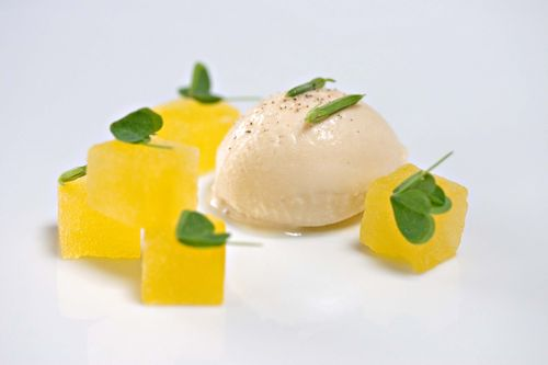 HoneyHamIceCreamOxalisYellowWatermelon