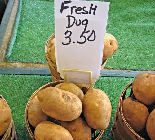 FreshDugPotatoes