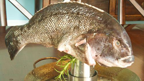 RawBlackfish