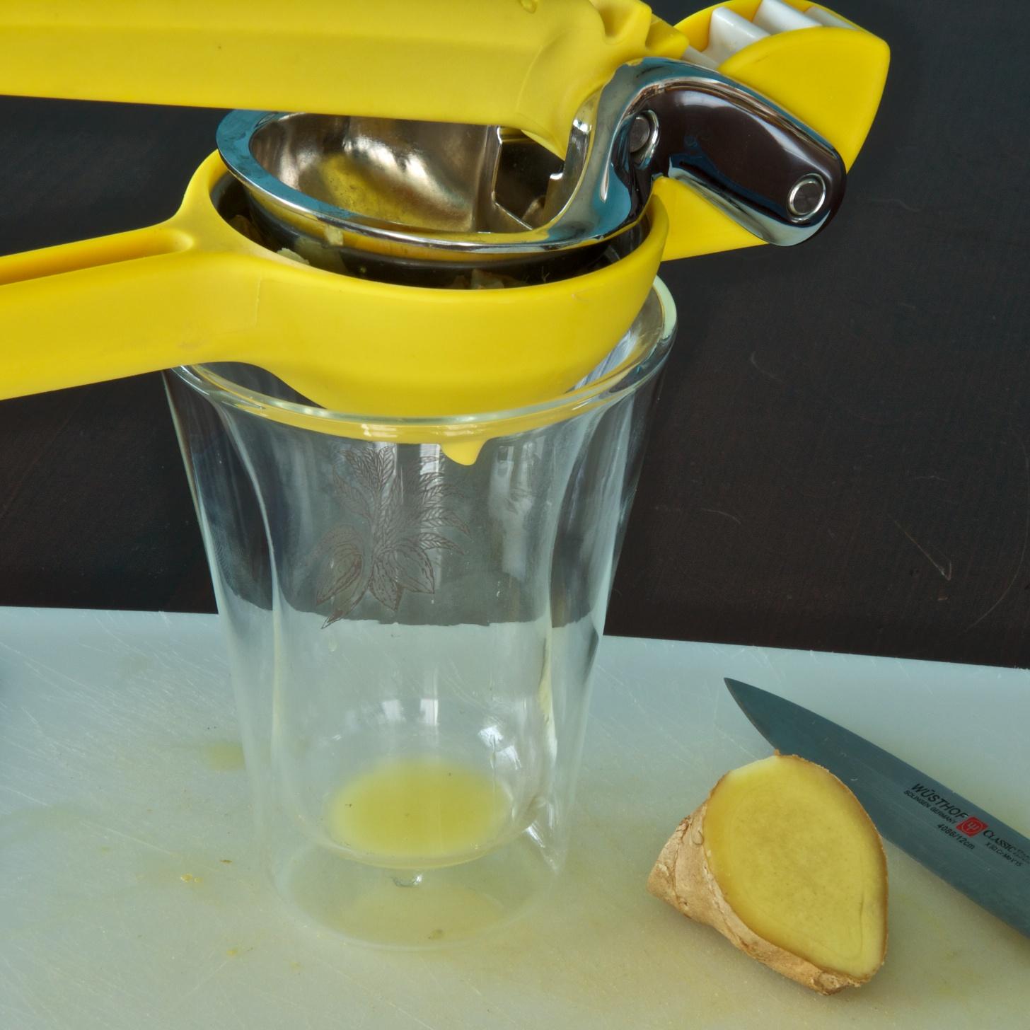 ginger juice maker
