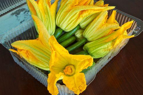 Zucchini&Blossoms