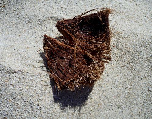 CoconutShellBeach