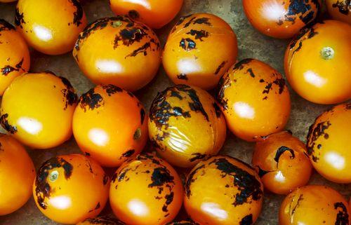 CharredTomatoes