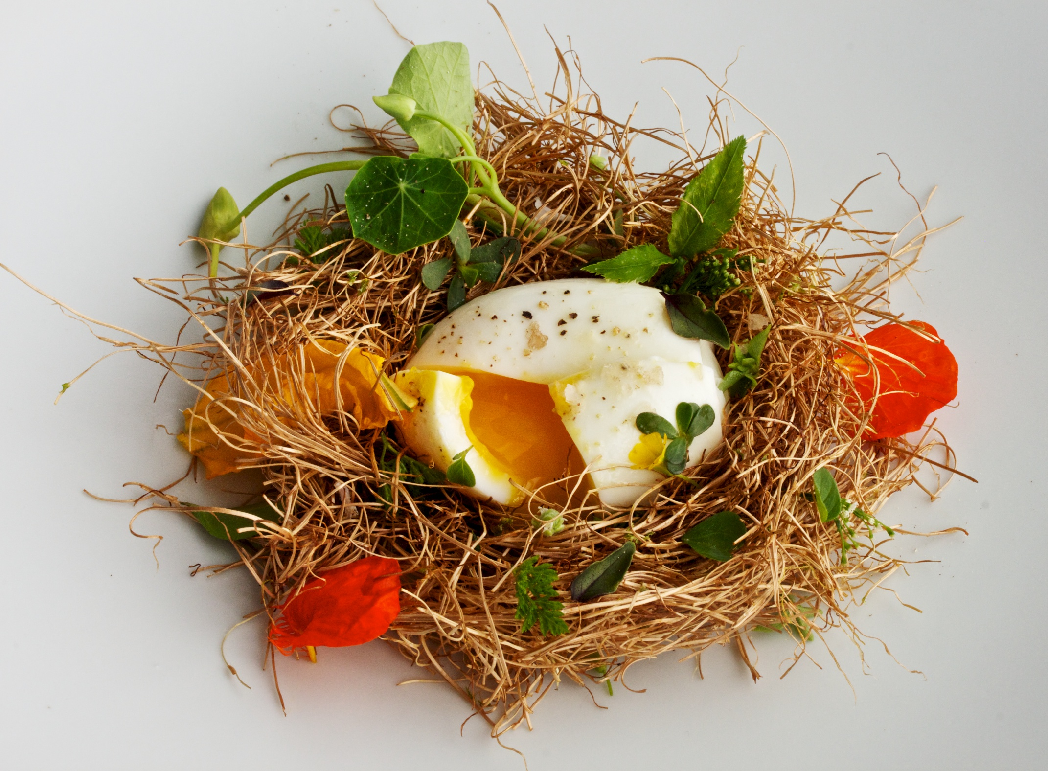 IDEAS IN FOOD: Nest Egg