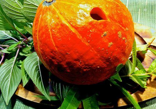 PumpkinForPouring