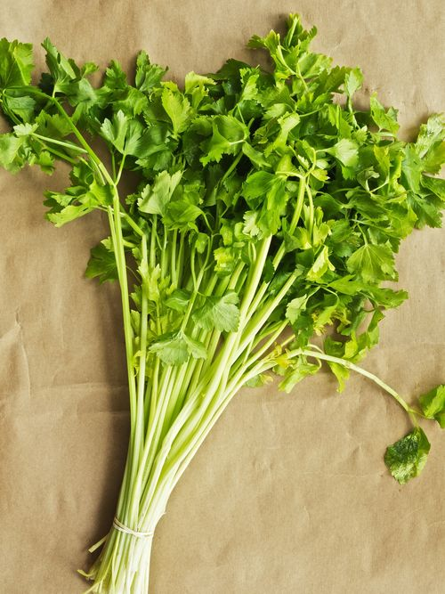 ChineseCelery2