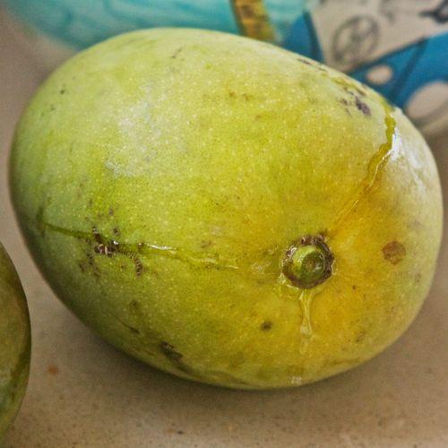 Mango&Sap