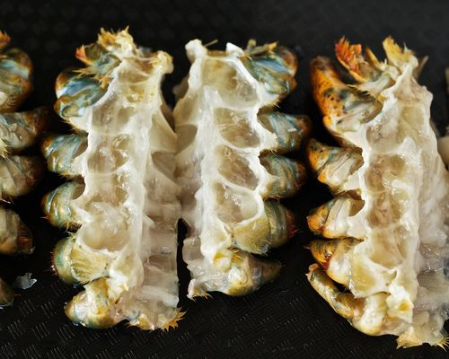 LobsterRibs