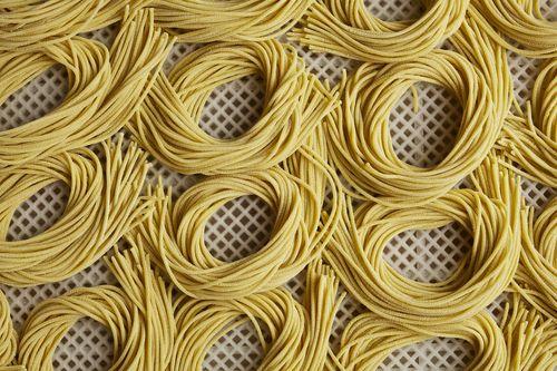 SpaghettiCoils#11