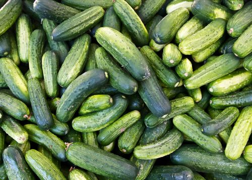 IDEAS IN FOOD: Pickle Potential