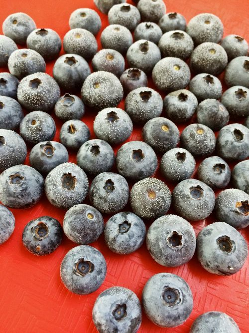 FrozenBlueberries