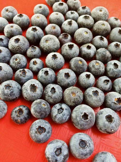 FrozenBlueberries