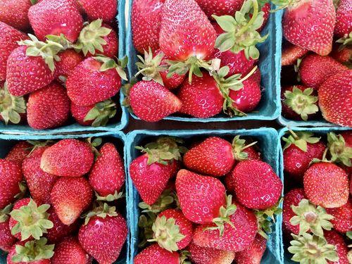LinedStrawberries