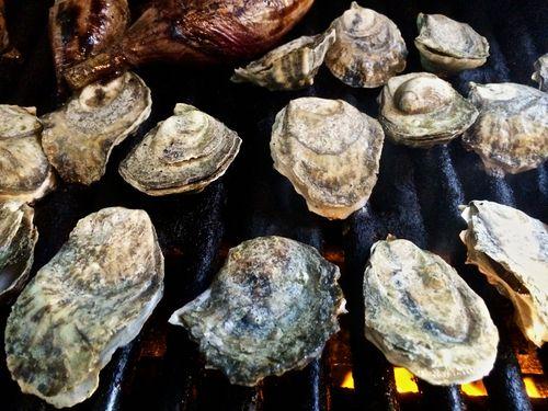 Grilling-Island-Creek-Oyster