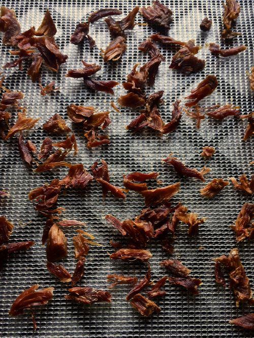 Dried-Smoked-Turkey-Leg