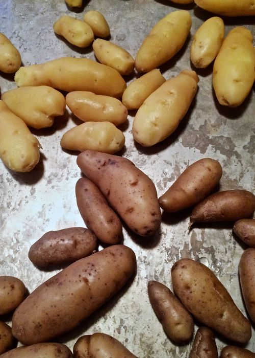 Peeling-Fingerlings