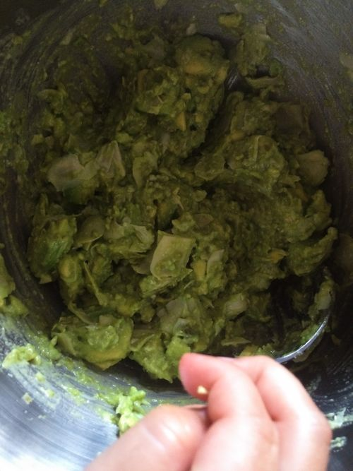 MixedArtichokeGuacamole-July 12, 2015