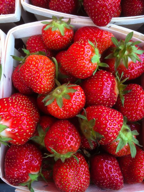 StrawberryBasket-June 27, 2015