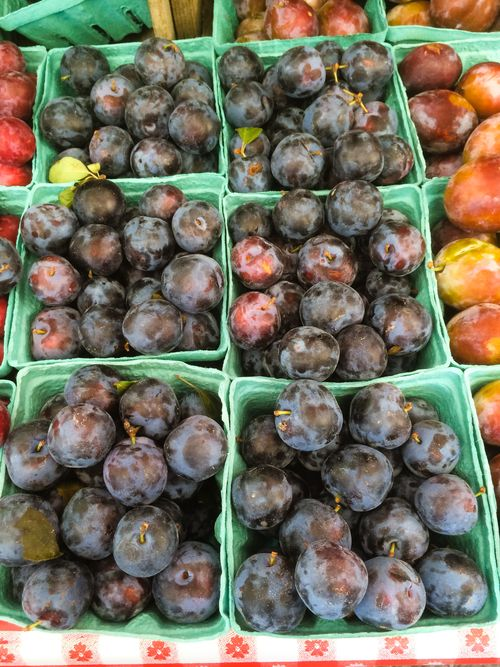 MarketPlums-August 26, 2015
