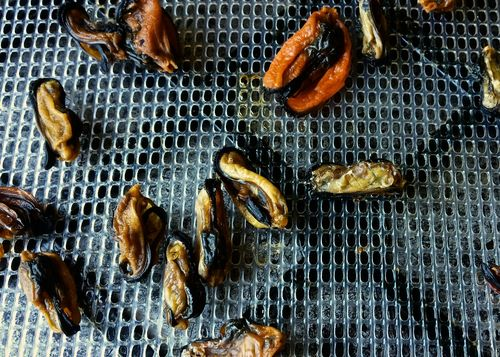 Dried-Mussels