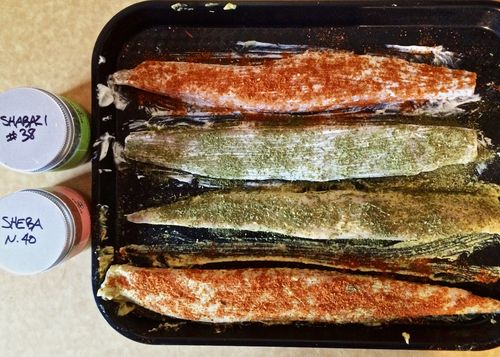 Mayo-Mustard-Mackerel-Spice-Rubbed