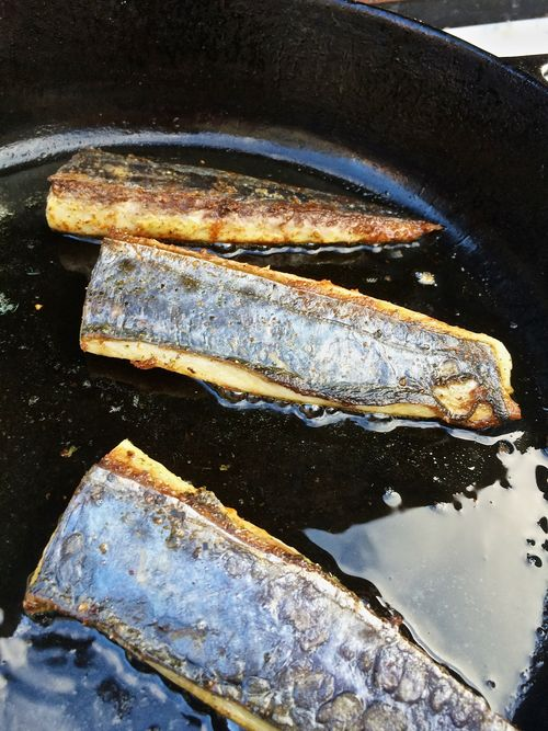 Mayo-Mustard-Mackerel-Spice-Rubbed-Oven-Roasted
