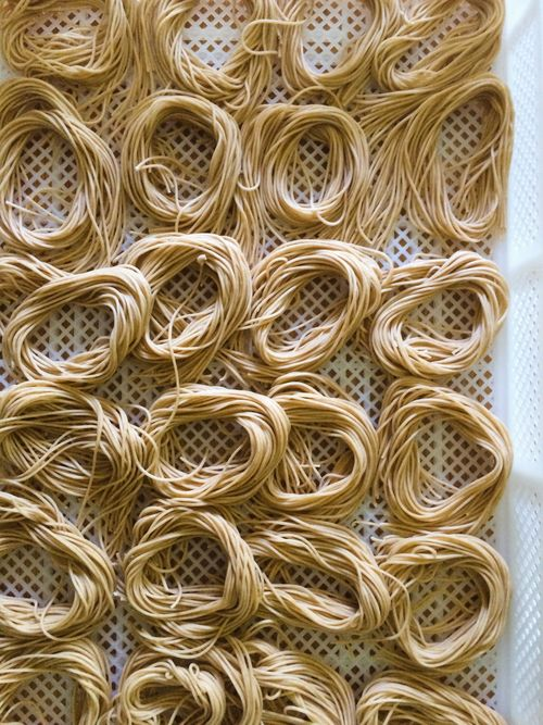 SproutedWheatChitarra-July 15, 2015
